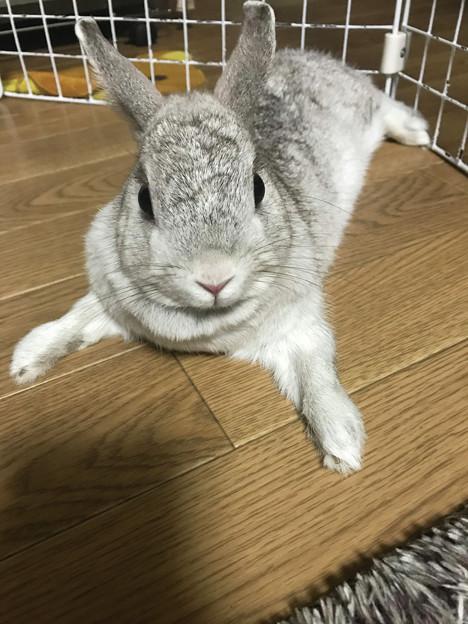 Photos: 凛花ちゃん