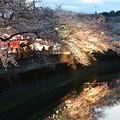 Photos: 大岡川2