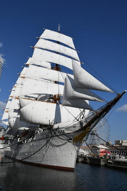 Photos: 総帆展帆