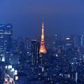 Photos: 青に染まる街
