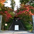 Photos: 今朝も円覚寺