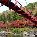 Photos: 香嵐橋