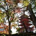 Photos: 本土寺