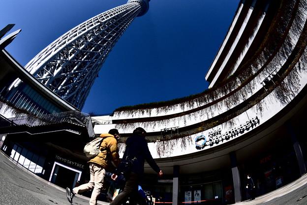 Photos: 快晴