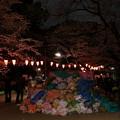 夜桜875s