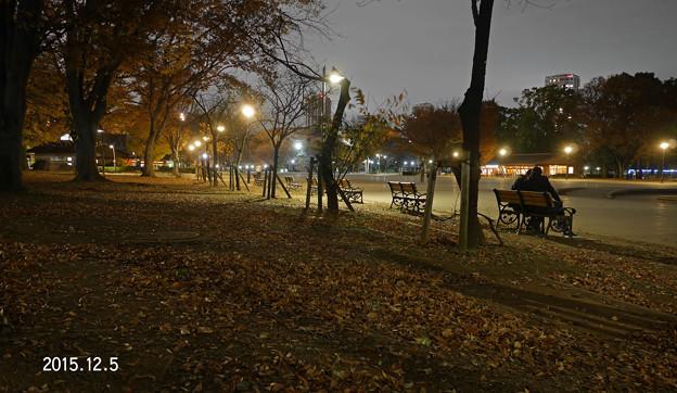 夜の公園20181205_188yoru