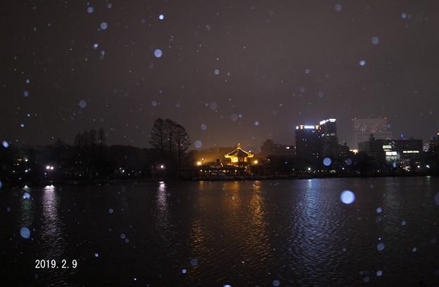 雪の池_143yoru