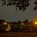 Photos: 夜_0723yoru2