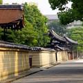 Photos: 東寺の朝