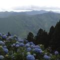 Photos: 20200712花園あじさい園a9