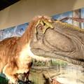 大恐竜博2019in鹿児島