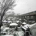 写真: 東京の雪景色