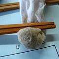 Photos: 箸づくり2