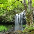 写真: 滝浴み