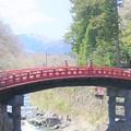写真: 山菅の蛇橋
