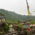 Photos: Hille村
