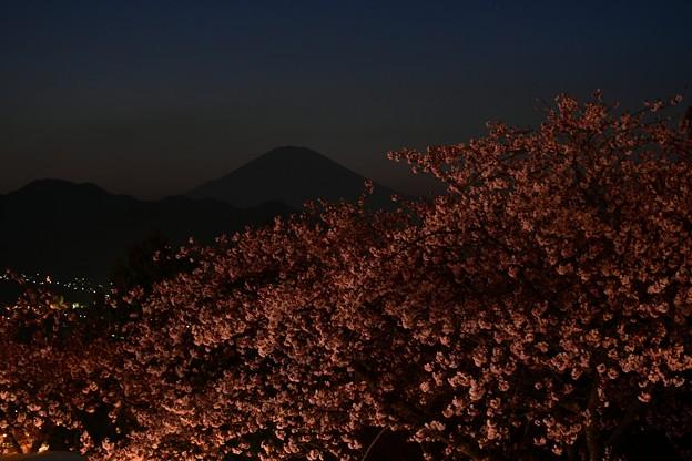 富士の黄昏