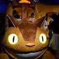 写真: ジブリの大博覧会 広島県立美術館