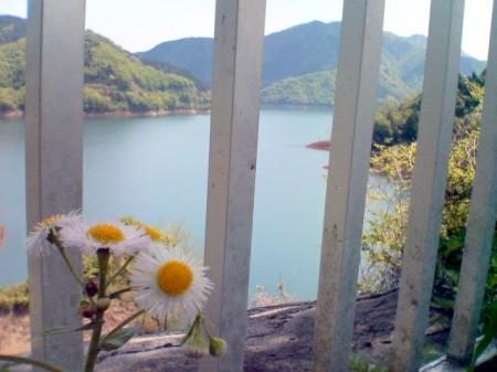 2007_05_03_富士山グルリのひとり走り_08_宮ケ瀬の柵の中から
