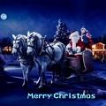 Merry Christmas(4)