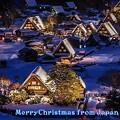 Photos: Merry Christmas(5)