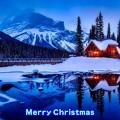 Merry Christmas(6)