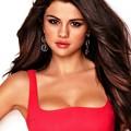 Beautiful Selena Gomez(9005857)