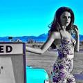 Beautiful Selena Gomez(9005953)