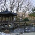 写真: 韓国庭園