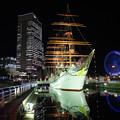 写真: 夜の日本丸