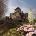 春の外交官の家