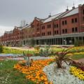 春の赤レンガ倉庫