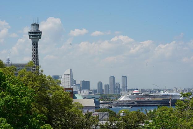 マリンタワーと飛鳥