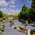 写真: 春の山下公園