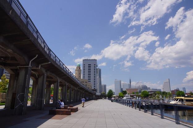 写真: 初夏の横浜