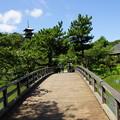 橋と三重塔