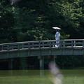 Photos: 橋を渡る女性