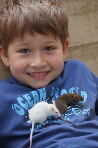 少年とハツカネズミ