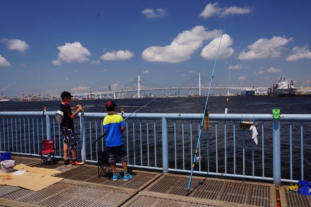 Photos: 海釣り公園