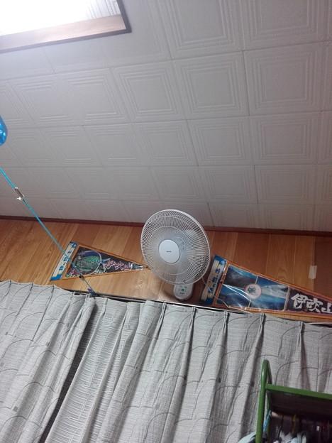 扇風機フル回転