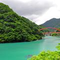 写真: 初夏 ?部峽谷鐵道之旅