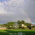 写真: 虹とシャボン玉