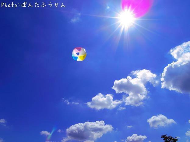 写真: 夏本番!