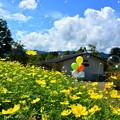Photos: 1568027379_85