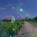 Photos: 1568292310_60