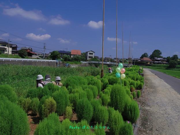 Photos: 1569079732_45