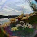 Photos: 1569711318_24