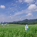 Photos: 1569769030_59