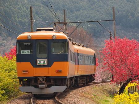 大井川鐵道16000系普通  抜里~川根温泉笹間渡02