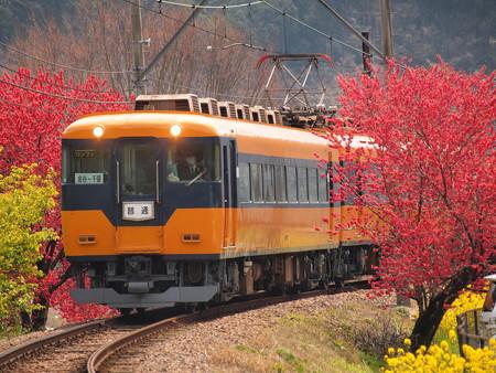 大井川鐵道16000系普通  抜里~川根温泉笹間渡05